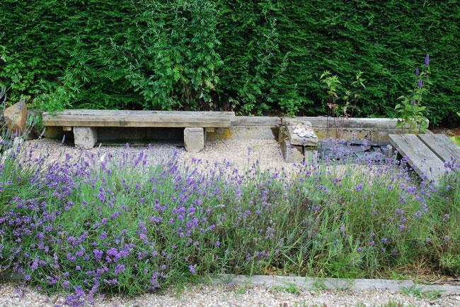 Bench in lavender garden